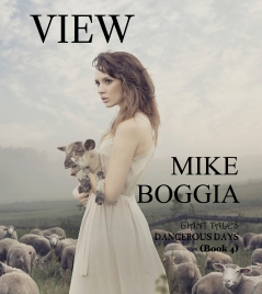 Mike Boggia View